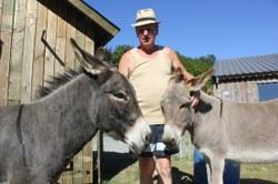 Jean-Pierre et ses ânes