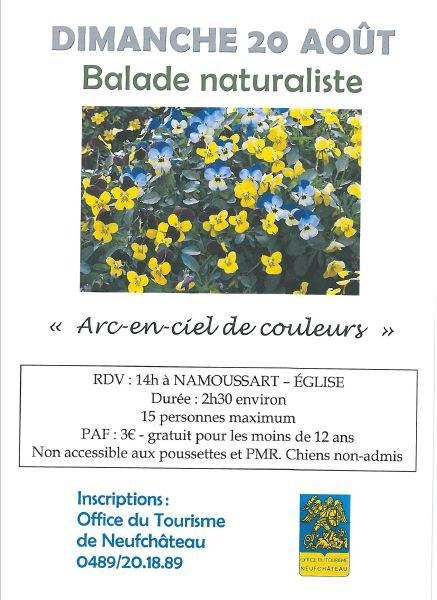affiche balade naturaliste 20 août